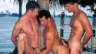 Gilligan s island fake porn