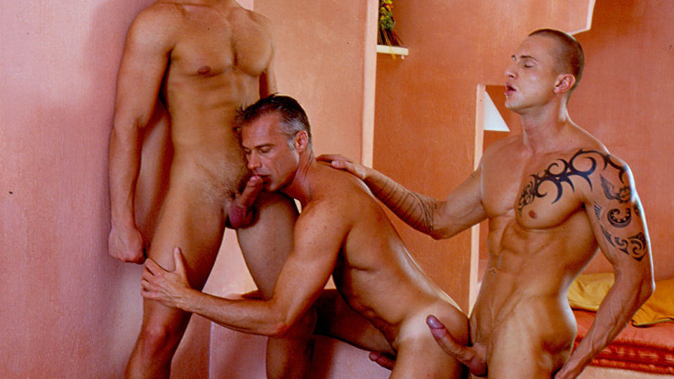 Hulu style gay porn