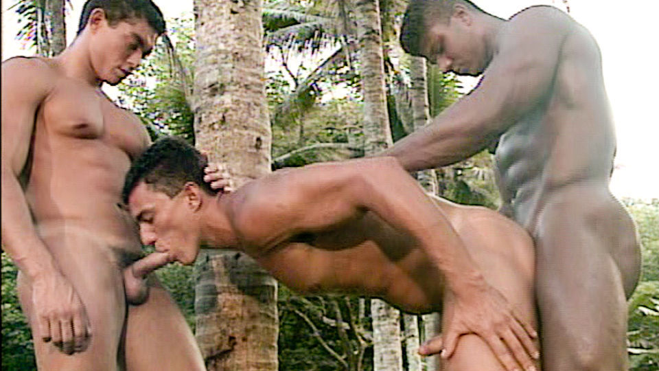 Jungle Heat Scene 4