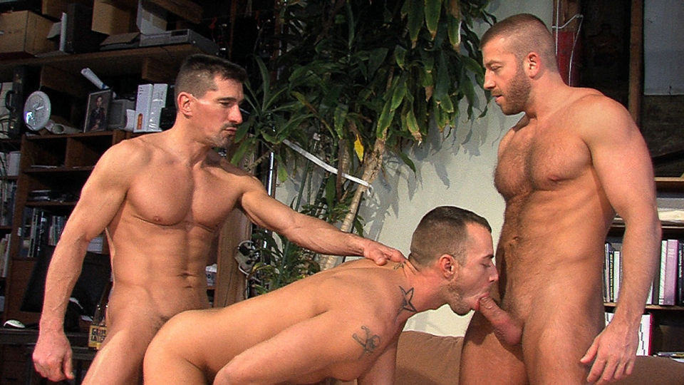 gay stories about old gay guys sucking cock