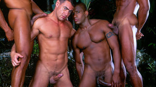 from Judson amazon list gay films